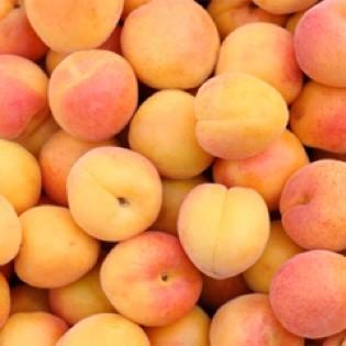 Aus Valentinas Küche: Aprikosenmarmelade mit Kardamom