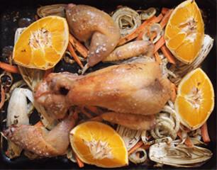 Rezept von Sophie Wright: Gebratenes Perlhuhn mit Chicorée, Fenchel und Orange