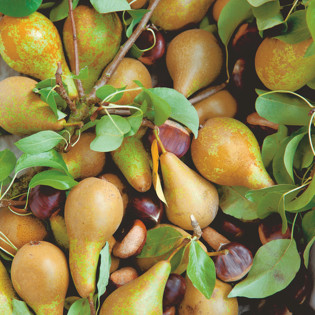 Rezept von Diana Henry: Birnen-Maronen-Marmelade