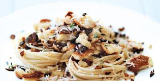 pasta-hay