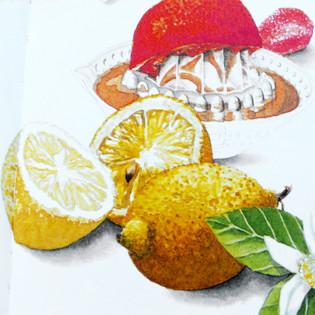 Rezept von Oskar Marti: Gelee aus Zitrusfrüchten