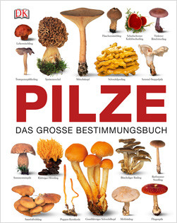 lexikon-pilze-2