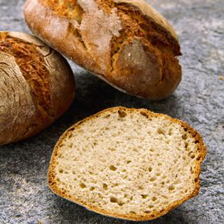 Rezept aus Brotbackbuch Nr. 2: Roggenbrötchen