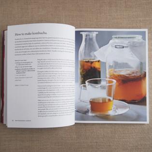 kochbuch-dunja-gulin-fermented-foods-inside-valentinas