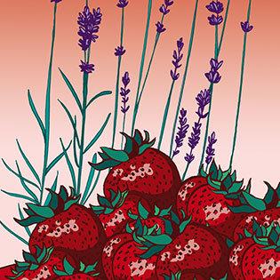Rezept von Véronique Witzigmann: Erdbeeren mit Lavendelblüten