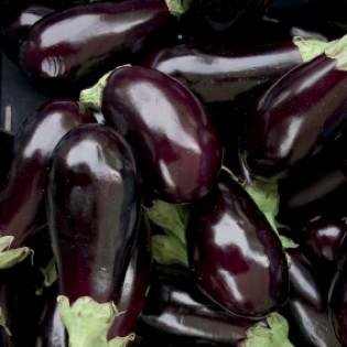 auberginen-rezepte