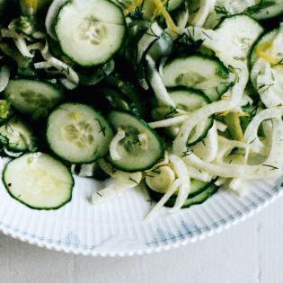 Rezept von Mikkel Lippmann: Gurken-Fenchel-Salat