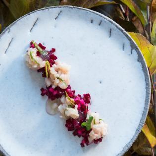 Rezept von Anna Matscher: Saiblingstatar mit Rohnen-Apfel-Salat