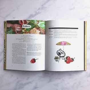 Kochbuch von Fühl dich Löwenzahn: Dein fantastischer Balkongarten