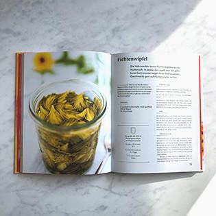 Kochbuch von Ingrid Palmetshofer: Geschmacksrevolution Fermentieren