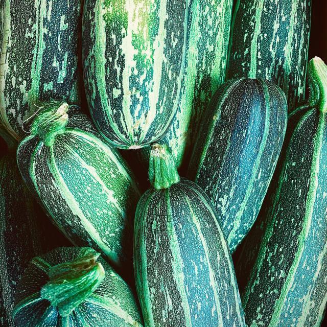 Zucchini | Rezepte